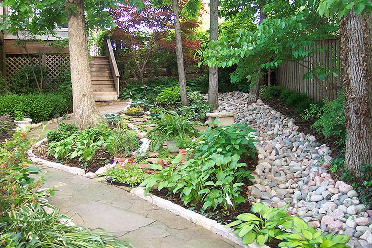 garden, asheville, landscape, plants