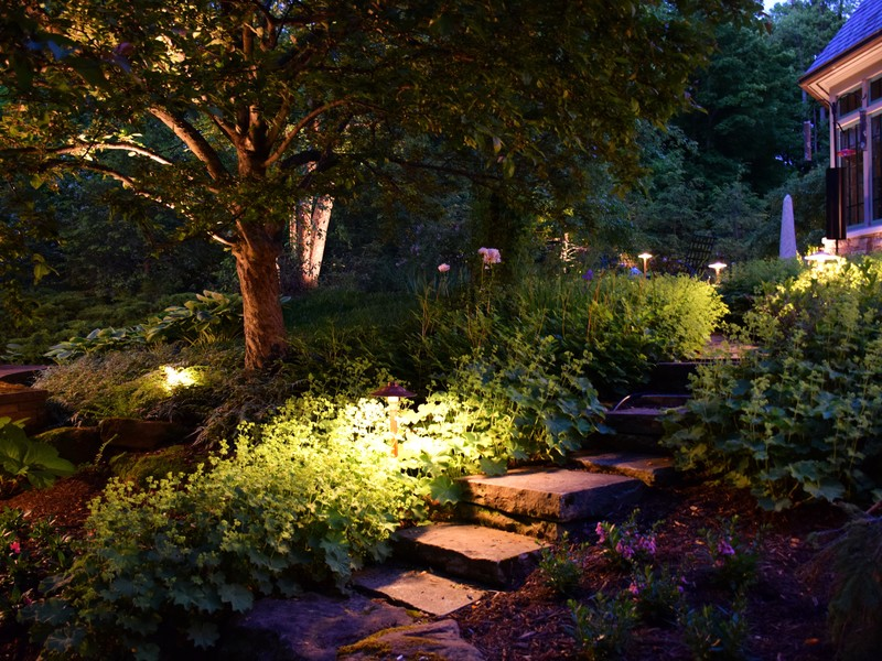 Low voltage lighting, outdoor, landscape lighting