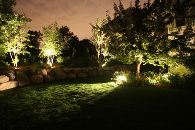 Landscape Lighting, low voltage, LED, outdoor lights, Up-light