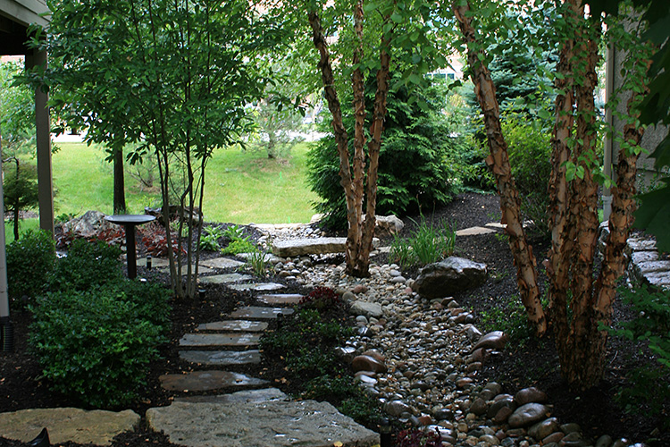 landscape, drainage, stepping stones, trees, mulch